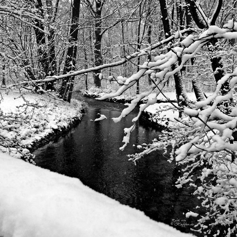LoveAndLilies.de|Winter im Englischer Garten in München 02