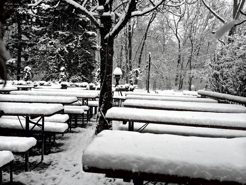 LoveAndLilies.de|Winter im Englischer Garten in München 03