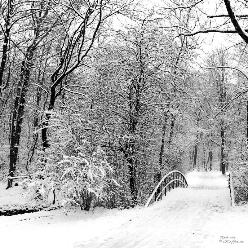 LoveAndLilies.de|Winter im Englischer Garten in München 04