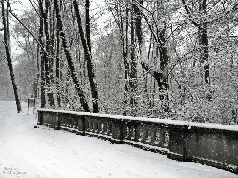 LoveAndLilies.de|Winter im Englischer Garten in München