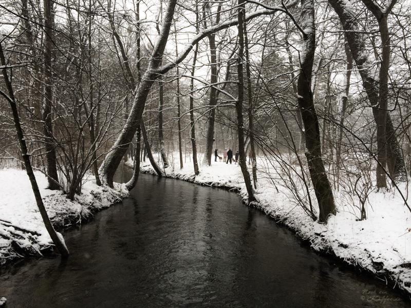 LoveAndLilies.de|Winter im Englischer Garten in München 05