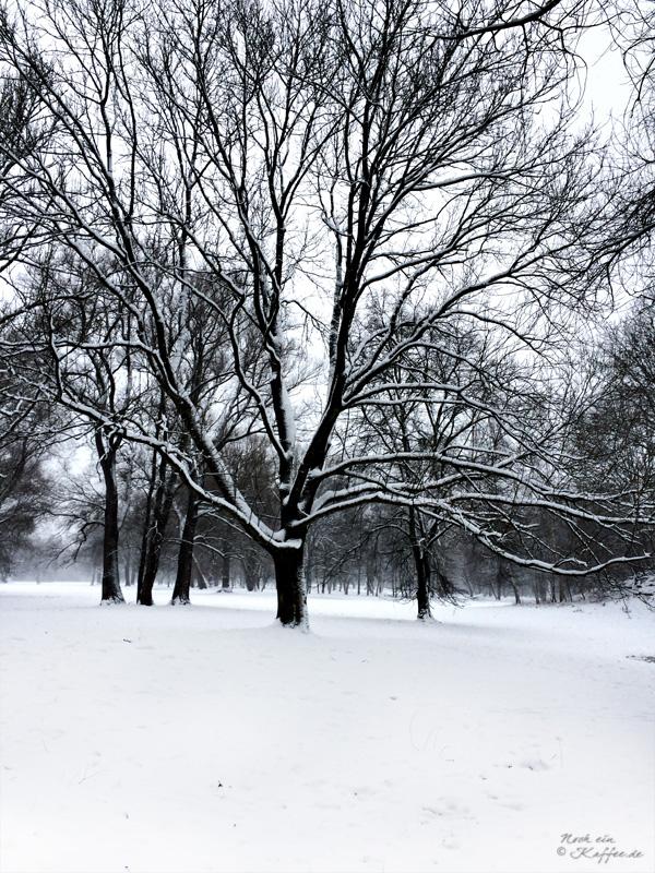 LoveAndLilies.de|Winter im Englischer Garten in München 06