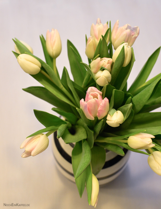 LoveAndLilies.de|Tulpen . Tulips - Always brightens up your day