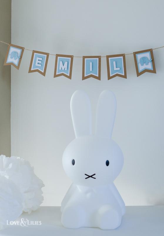 LoveAndLilies.de | Babyshower Babyparty Ideen:  Namensgirlande für Emil mit Elefant