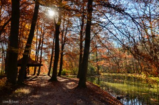 LoveAndLilies.de | Herbst im Englischen Garten